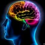 77 способов раскрыть возможности мозга
